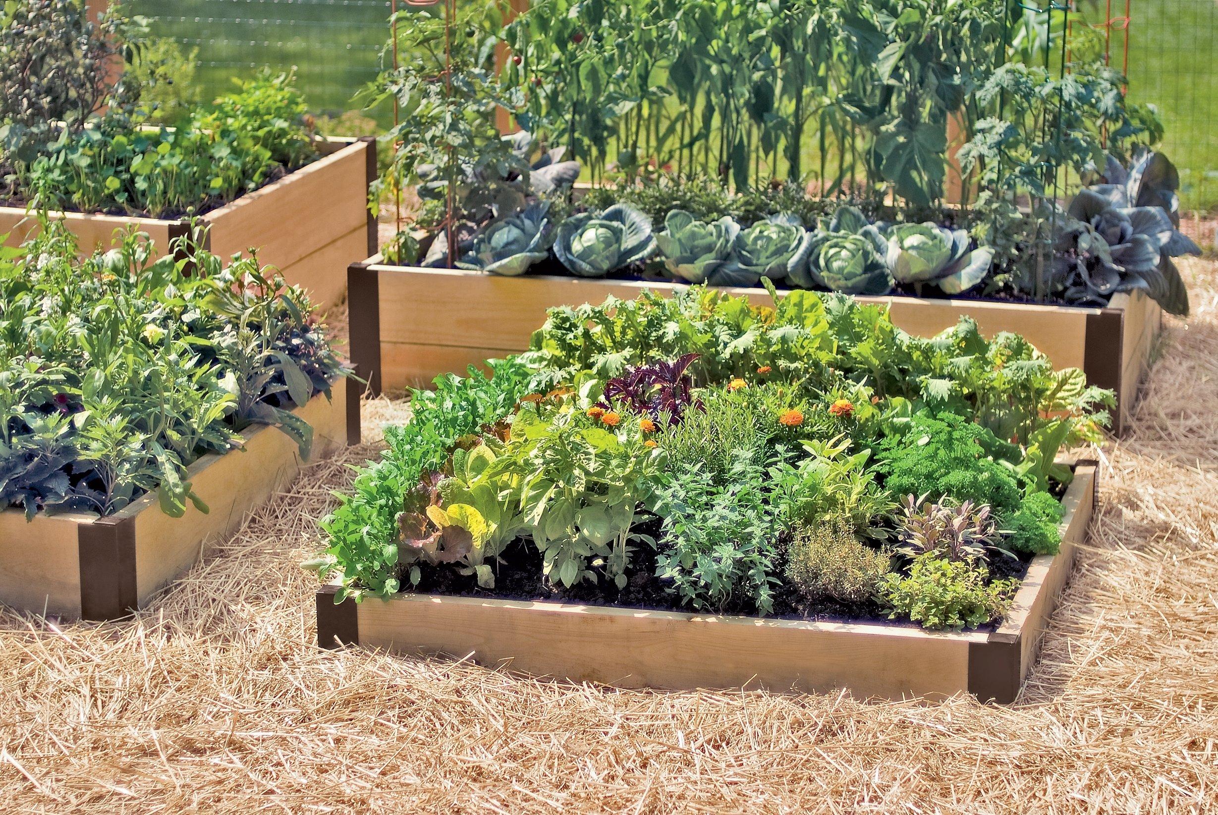 10 Unique Raised Bed Garden Design Ideas small wood diy raised bed designs vegetable gardens ideas with straw 2021