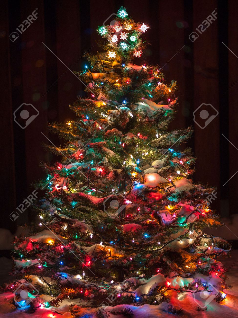10 Elegant Christmas Tree Decorating Ideas With Multi Colored Lights snow covered christmas tree with multi colored lights stock photo 2021