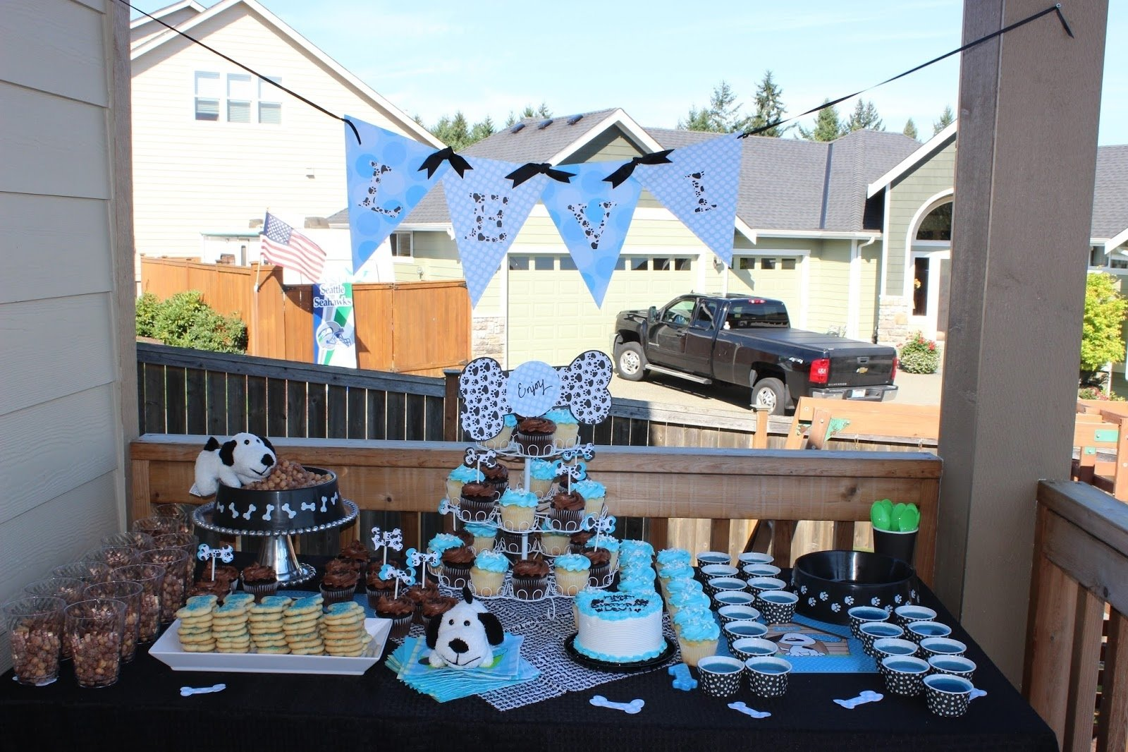 10 Cute Party Ideas For 16 Year Old Boy something creative levis puppy party 1 2020