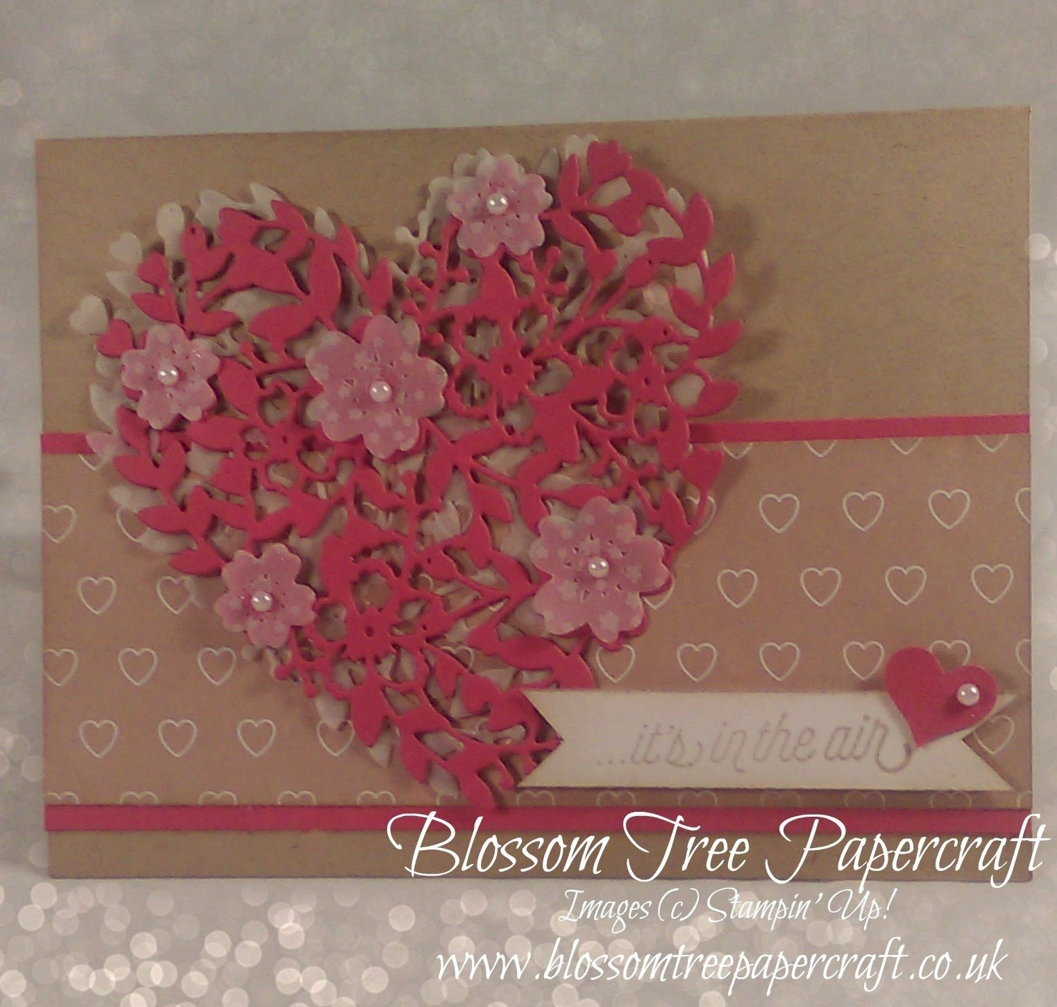 10 Fashionable Stampin Up Valentine Card Ideas stampin up bloomin love valentine card youtube 2020