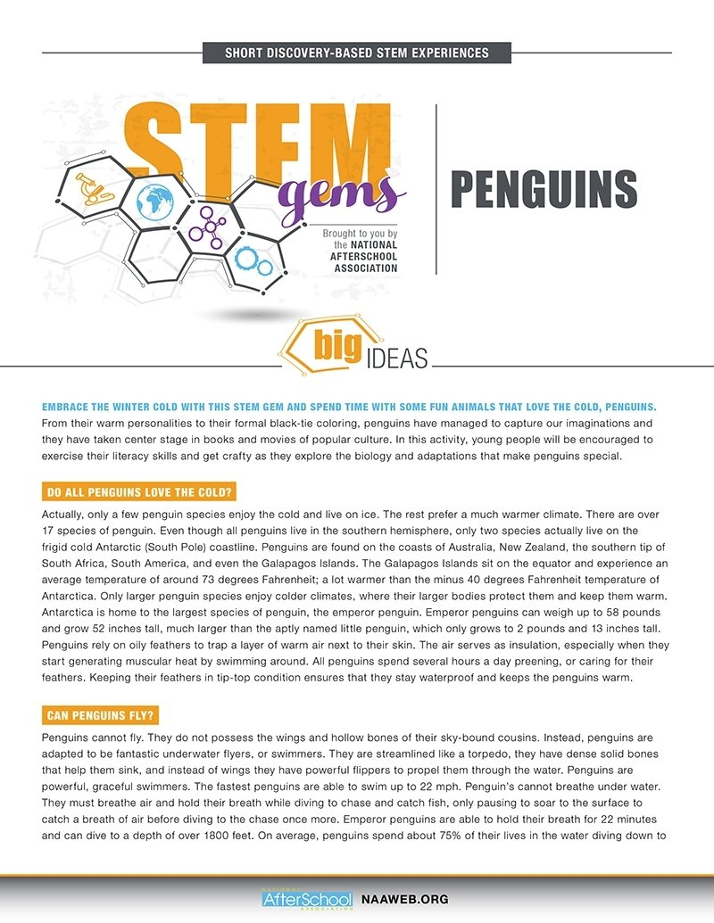 10 Nice After School Program Activity Ideas stemgems penguins 1 1