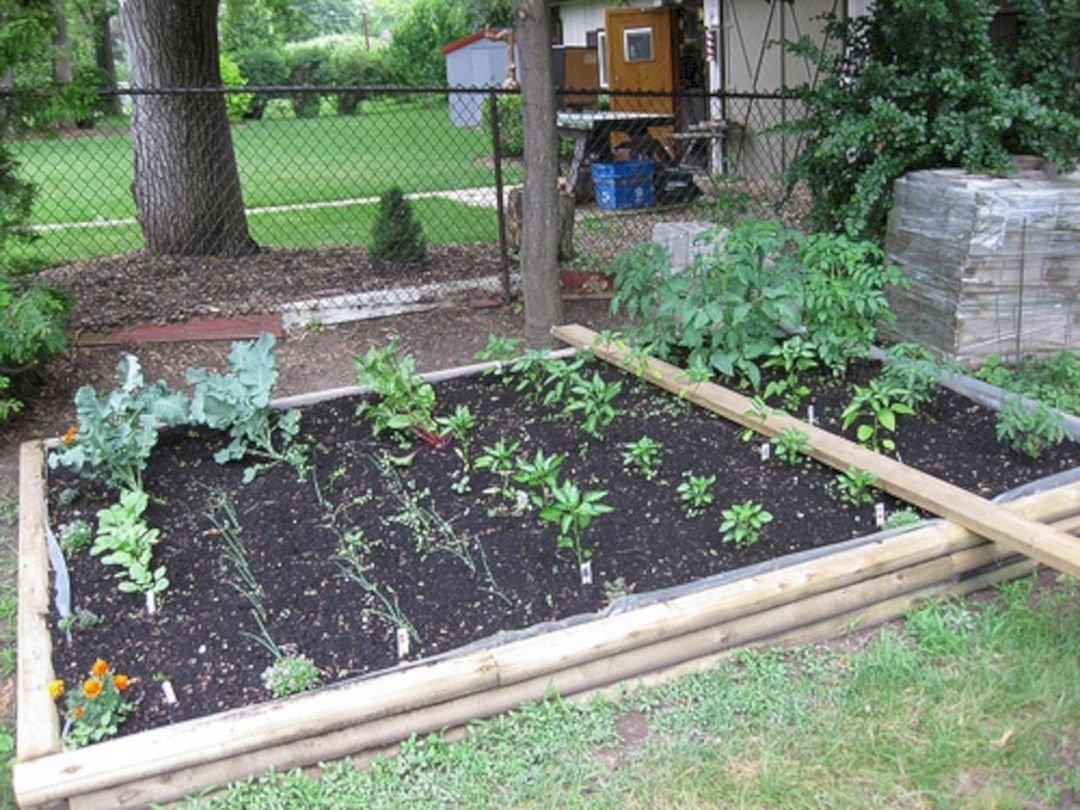 stunning-backyard-vegetable-garden-design-ideas-in-interior-designing-home- ideas