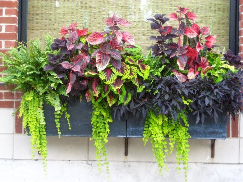 10 Fashionable Flower Pot Ideas For Front Porch sturdy porch planter ideas window house design and office wooden 2021