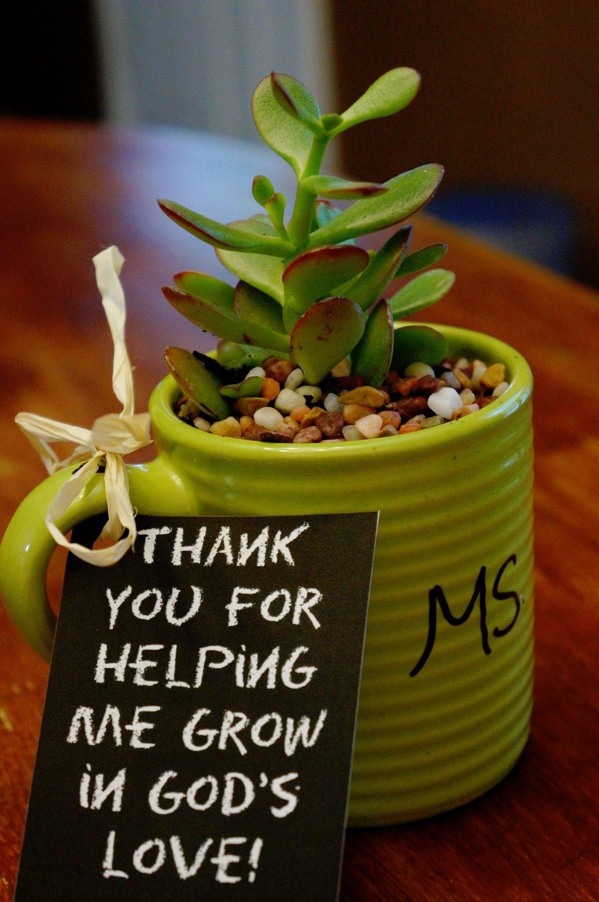 10 Lovable Christmas Gift Ideas For Daycare Teachers teacher appreciation gifts sunday school appreciation wordpress 2020