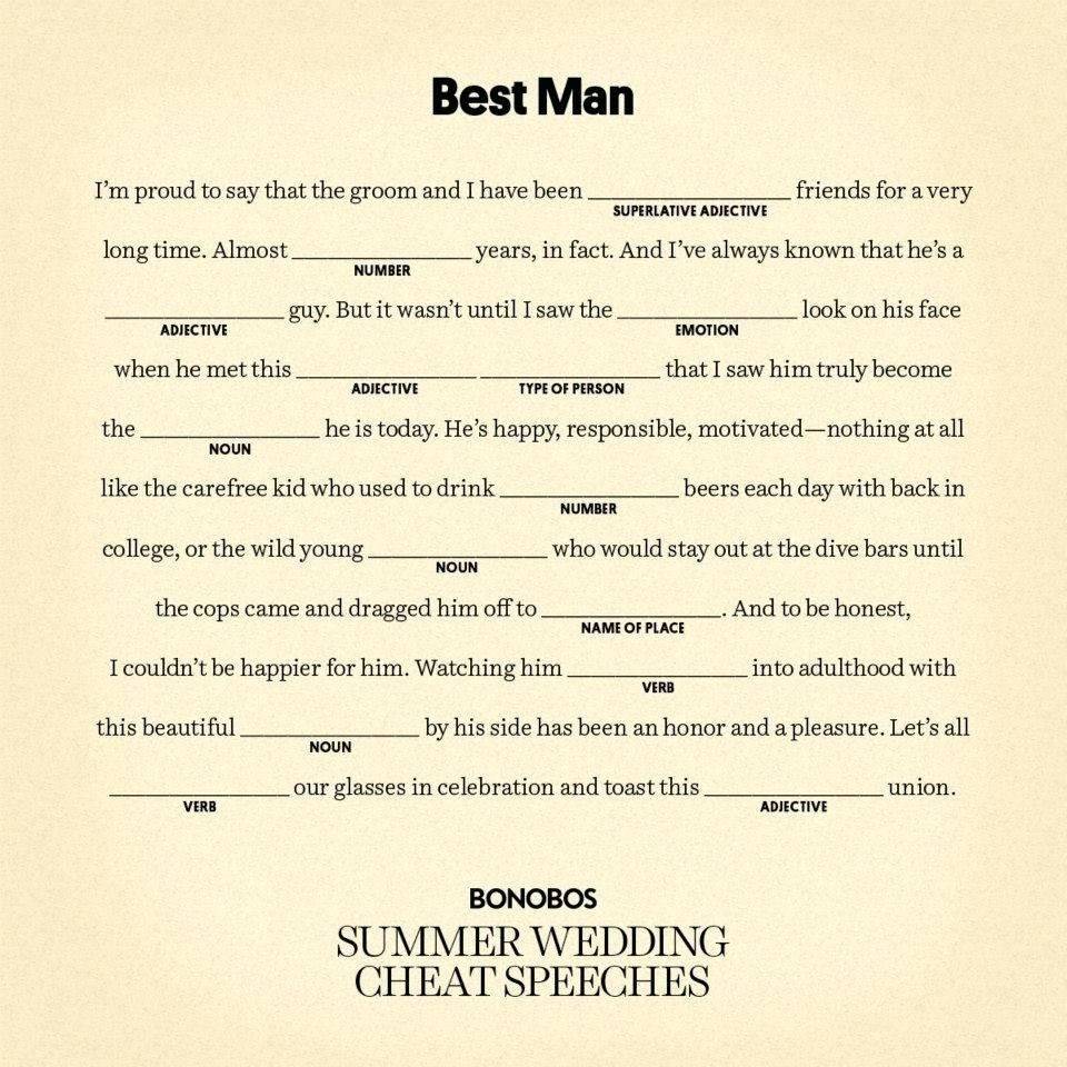 10 Awesome Best Man Speech Ideas Brother
