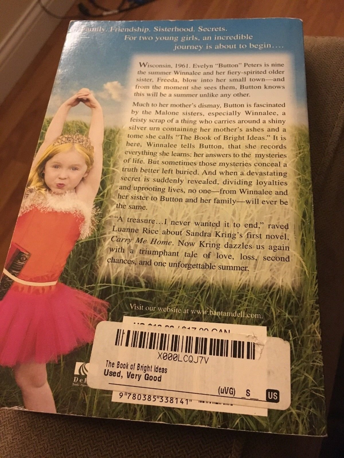 10 Fabulous The Book Of Bright Ideas the book of bright ideassandra kring 2009 paperback ebay 2021
