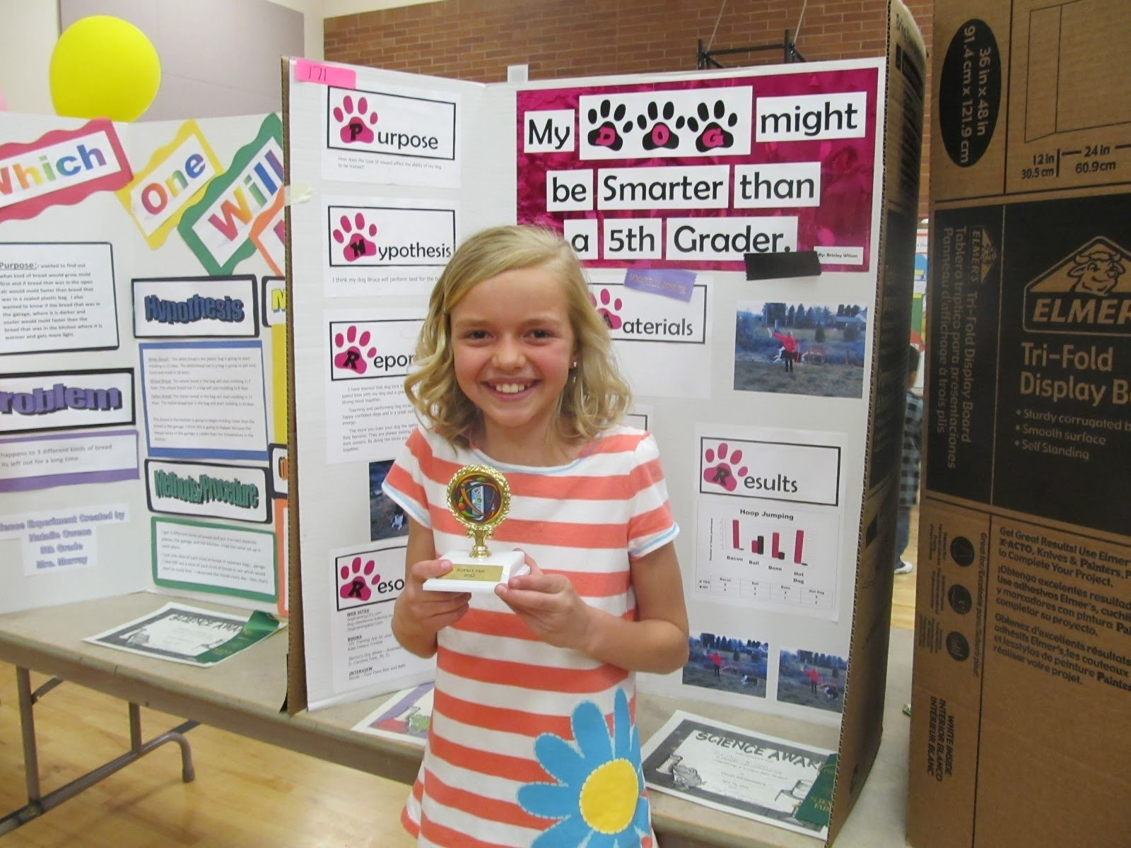 10 Most Popular Science Fair Project Ideas For Kids In 5Th Grade the science of my life updated declo science fair with newspaper 36