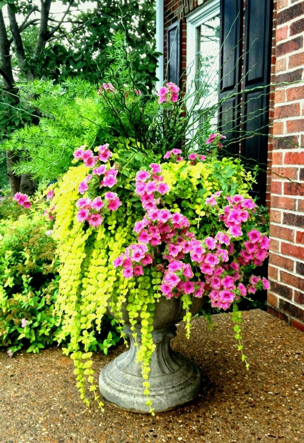 10 Nice Flower Pot Ideas For Patio thumbnails of back porch flower ideas patio boxes bed around small 2020