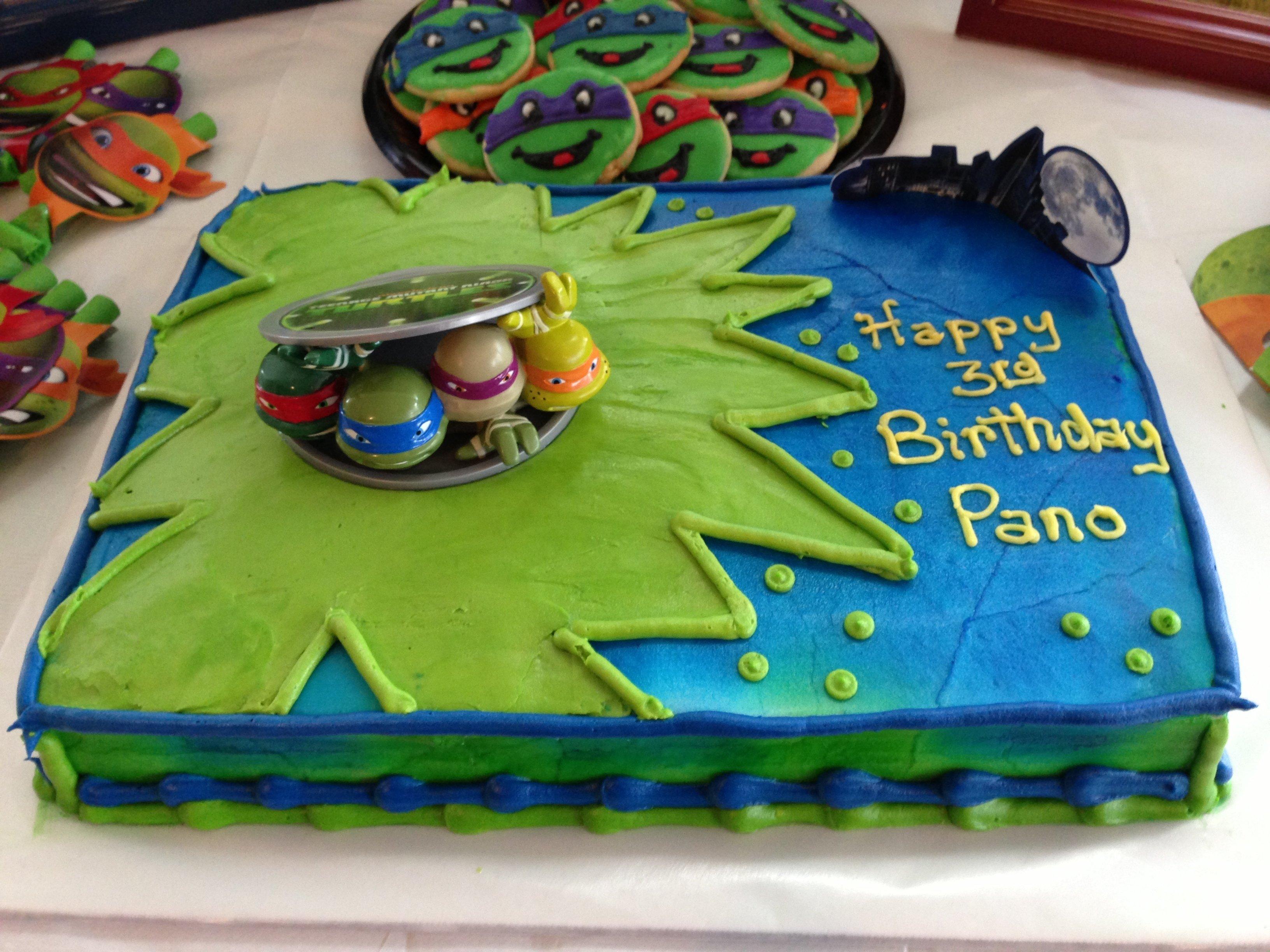 10 Unique Teenage Mutant Ninja Turtle Cake Ideas