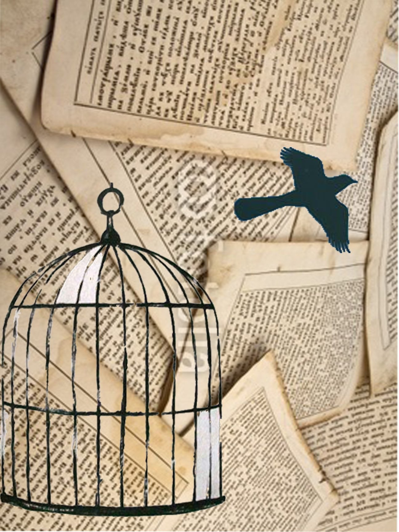 "to kill a mockingbird"" mod podge project 