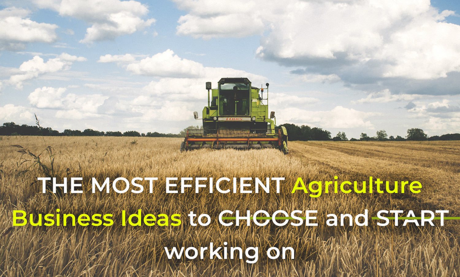 10 Stunning Business Ideas For Rural Areas top agriculture business ideas to d181hoose the best for yourself 2021