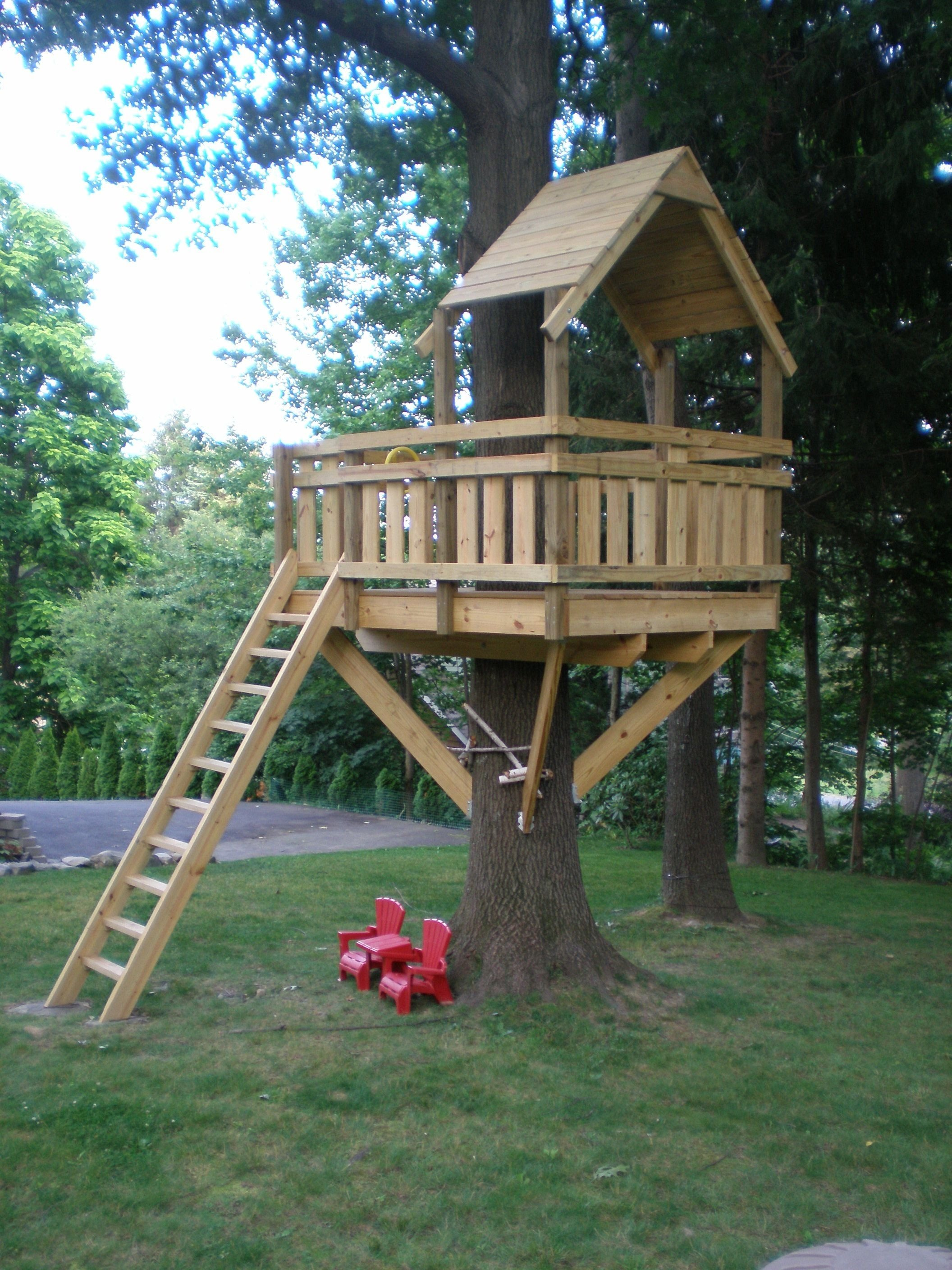 10 Wonderful Tree House Ideas For Kids tree fort ladder gate roof finale tree houses tree house 2020
