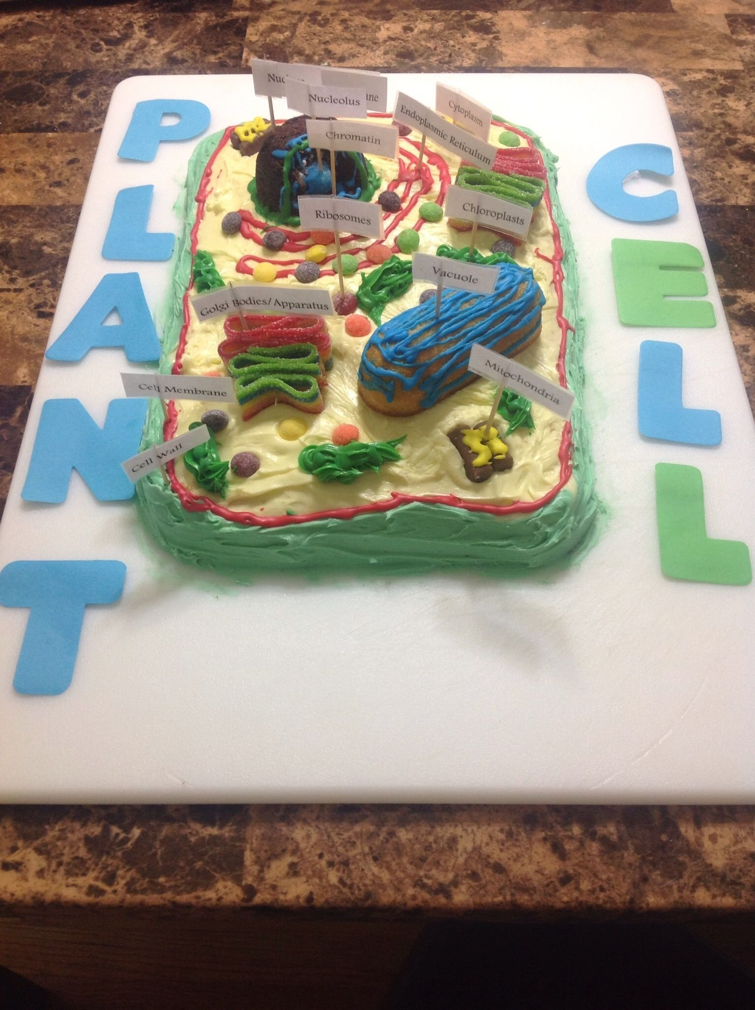10 Ideal Edible Plant Cell Project Ideas treys science project plant cell cake kids project ideas 1 2020