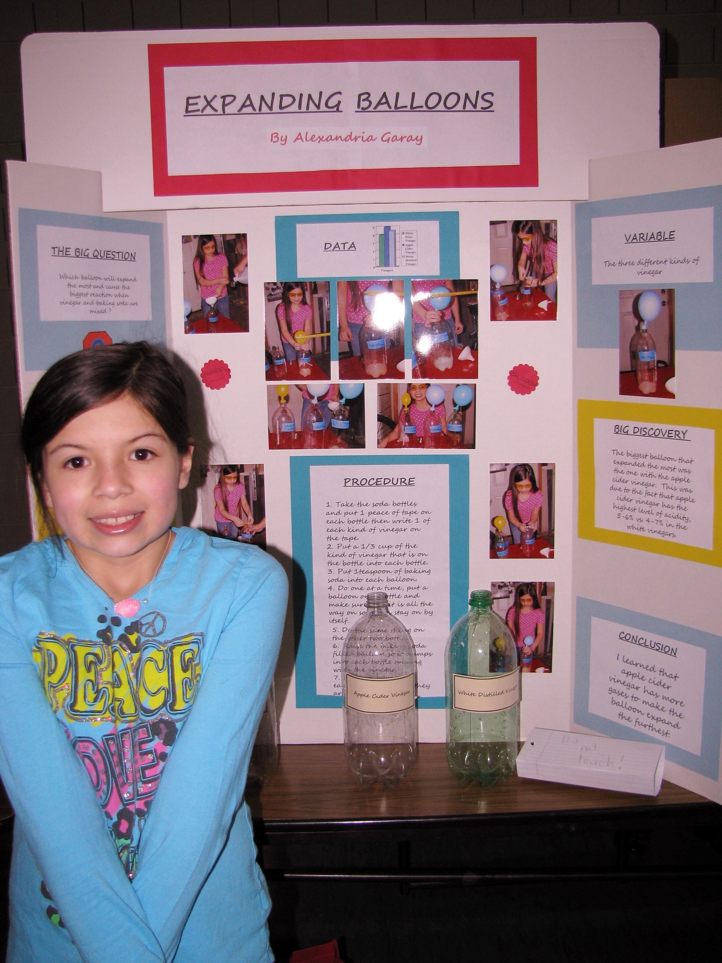 10 Cute Volcano Science Fair Project Ideas ultimate 4th grade science projects soda with science fair 2012 1