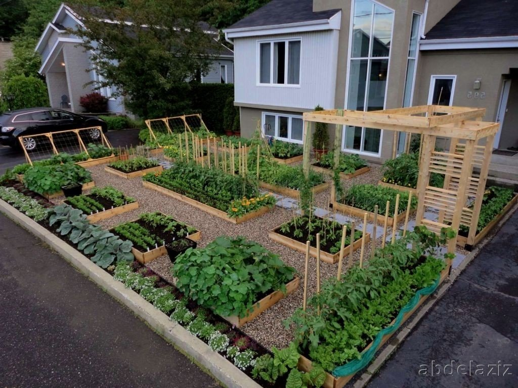 10 Cute Garden Ideas For Small Yards vegetable garden designs for small yards stunning gardens 2020