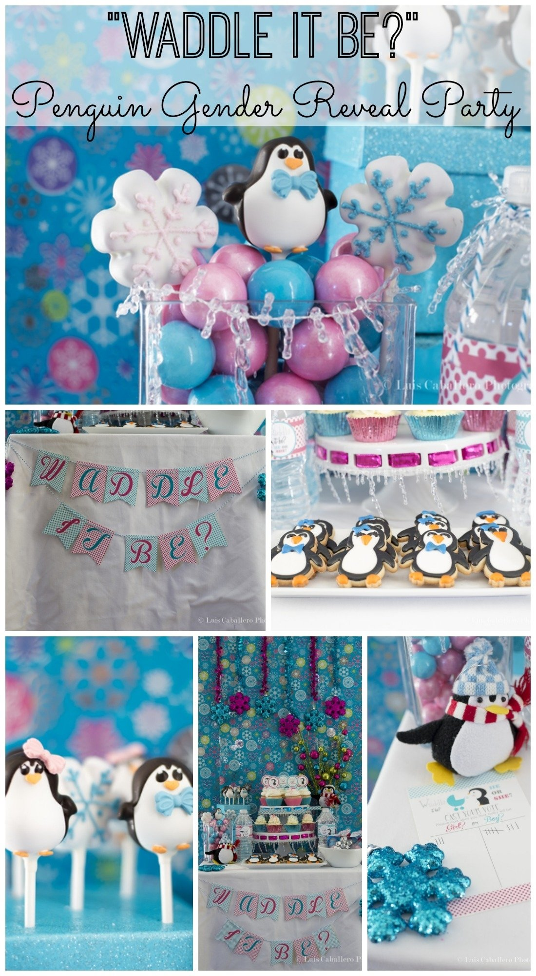 10 Trendy Gender Reveal Baby Shower Ideas waddle it be gender reveal baby shower great idea for winter see 1 2020