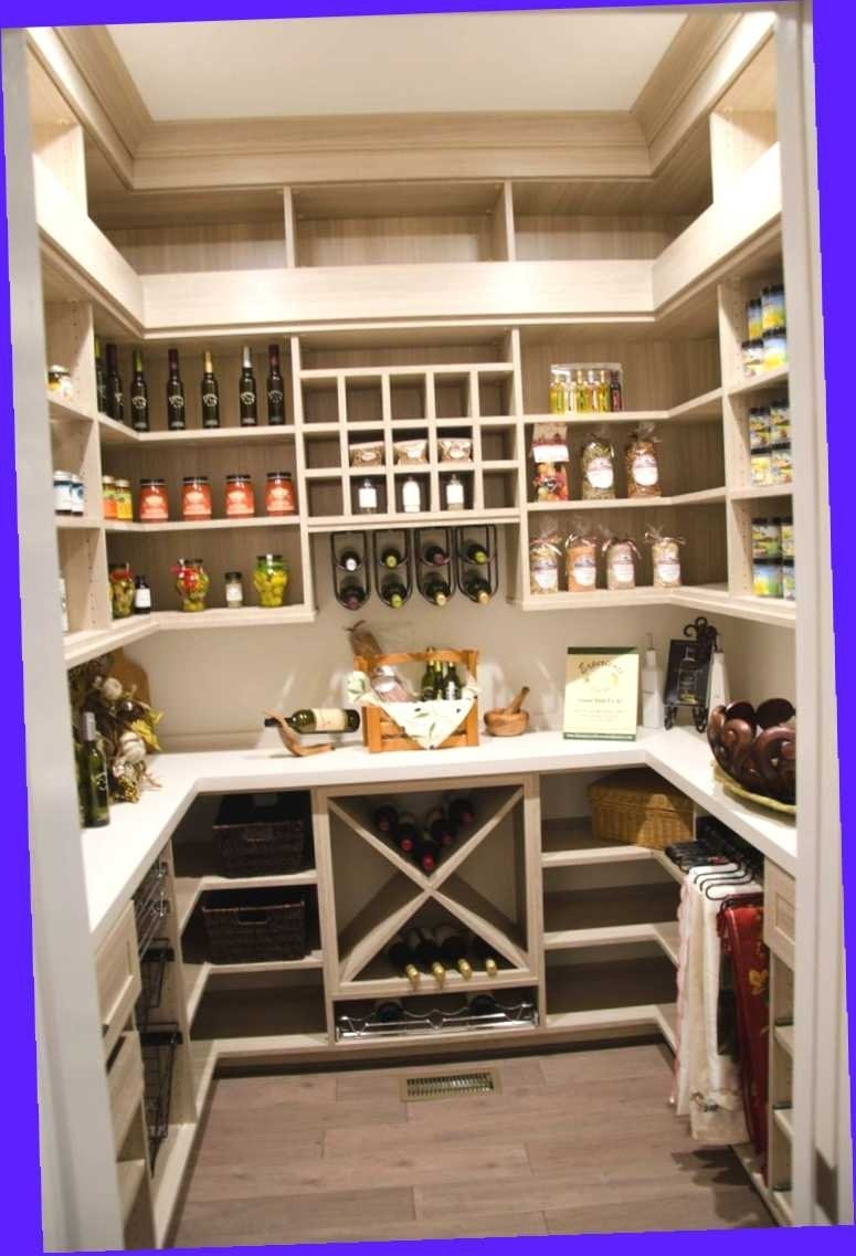 10 Cute Walk In Pantry Design Ideas walk in pantry kitchen ideas amazing plans with of styles and 2021