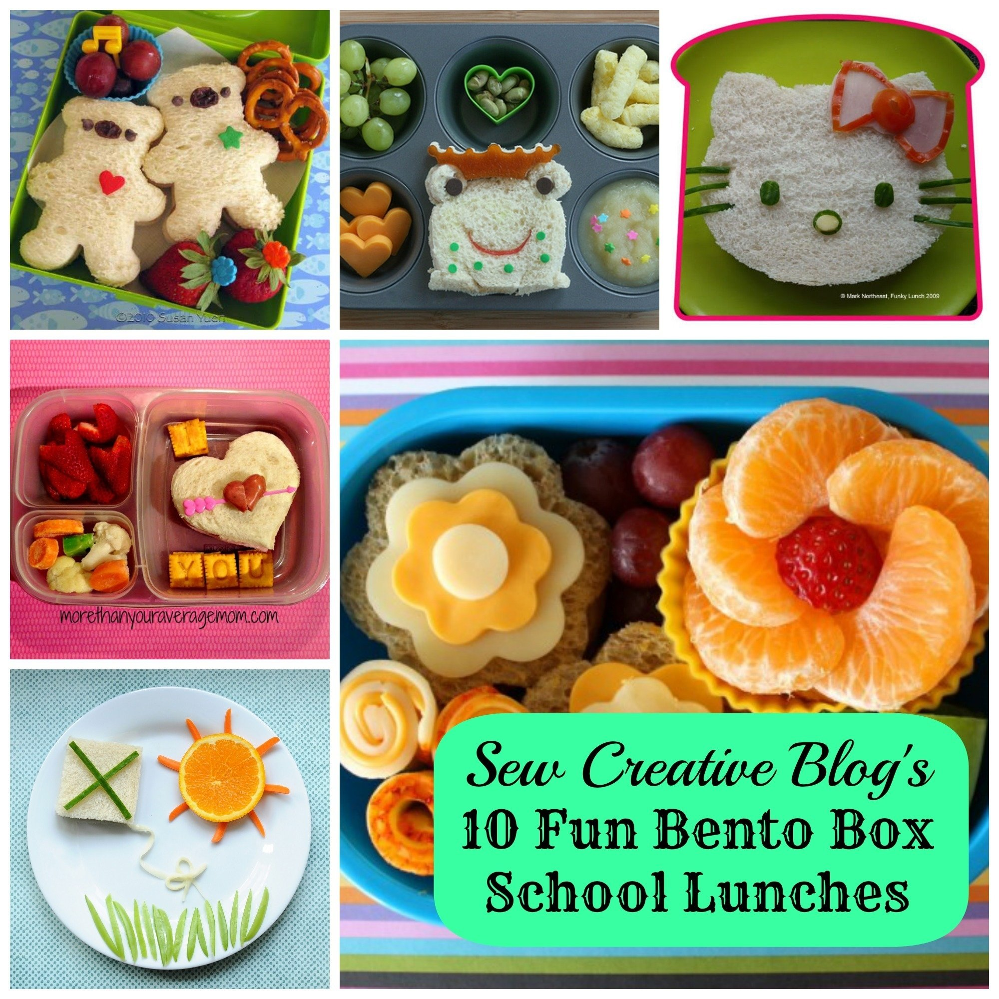 10 Cute Lunch Box Ideas For Picky Eaters weekly inspiration 10 fun bento box school lunches sew creative 5 2020