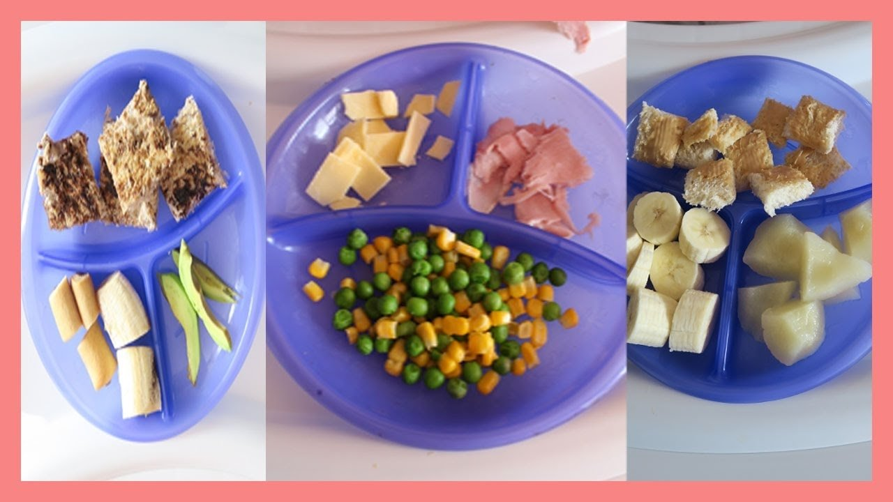 10 Ideal Lunch Ideas For 1 Year Old what i give my 1 year old for lunch youtube 8 2020