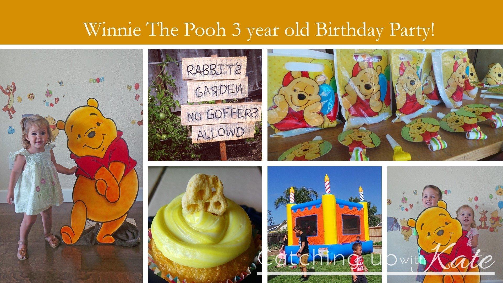 10 Pretty Winnie The Pooh Birthday Party Ideas winnie the pooh birthday party
