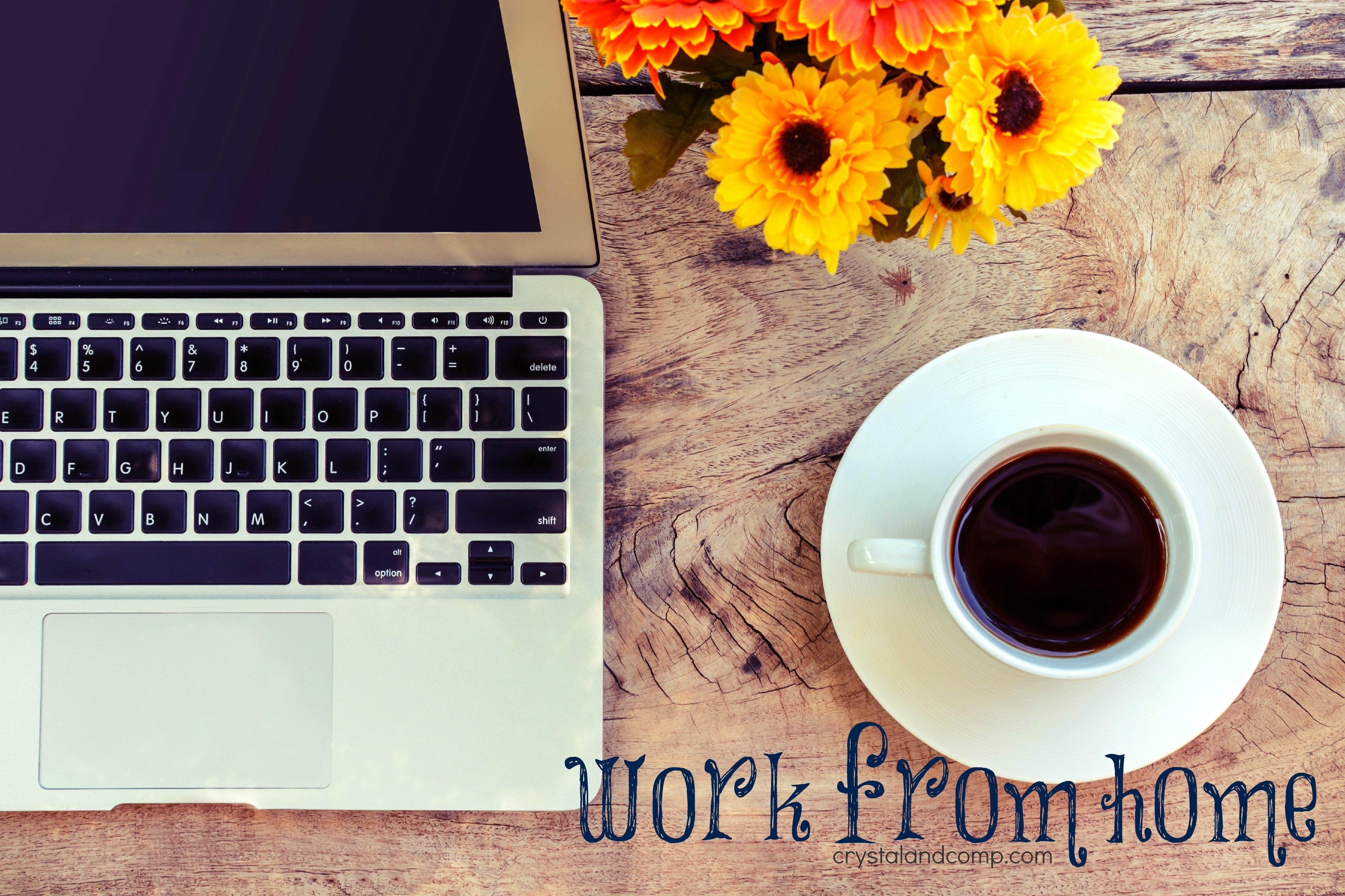 10 Most Popular Work From Home Ideas 2013 work at home find a wahm job 2020