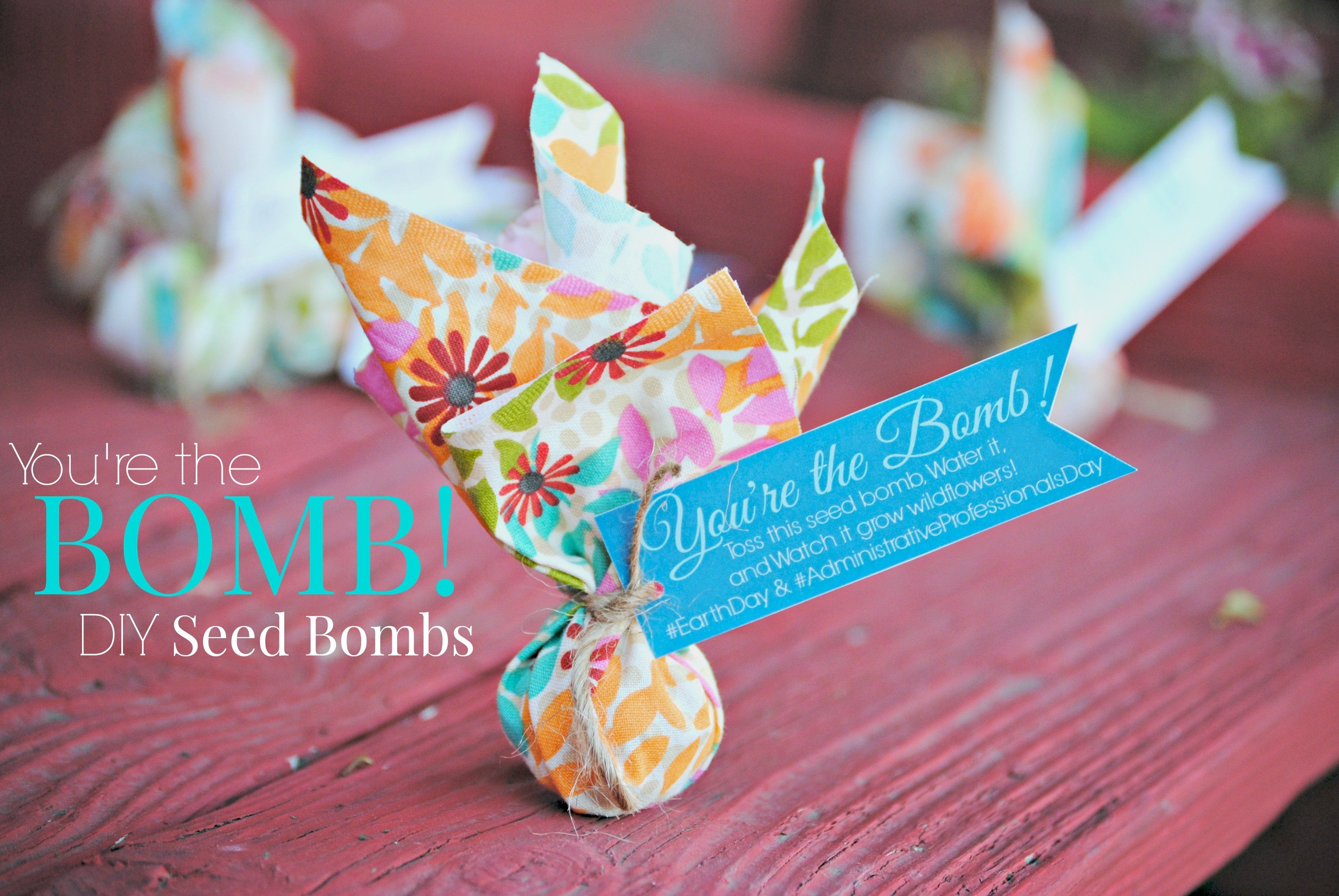 10 Stylish Admin Professionals Day Gift Ideas youre the bomb diy seed bombs administrative professionals day 1 2021